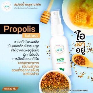 POW mouth spray พาว เมาท์ สเปรย์ 20 ml